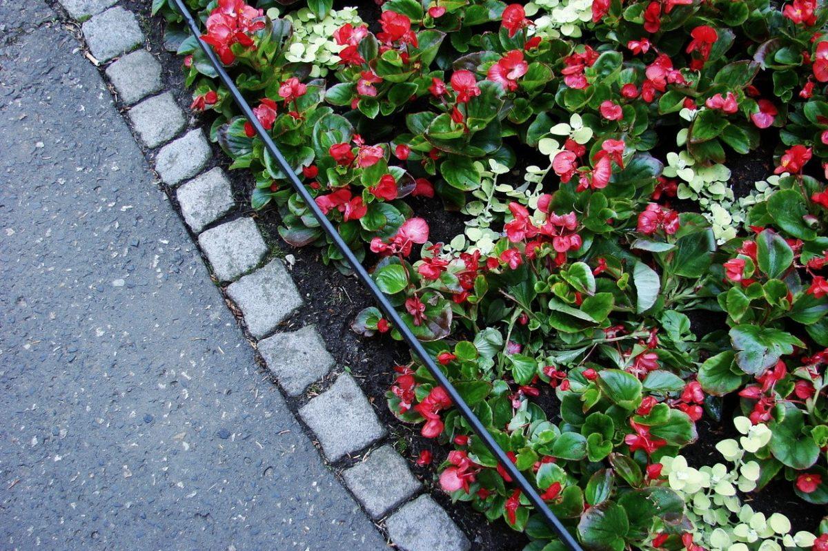 Zakładanie ogrodu wiosną