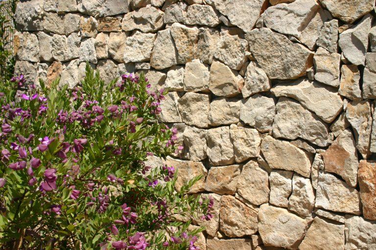 Kamienne kompozycje w ogrodzie