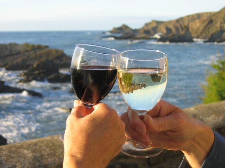 Warto znać rodzaje win